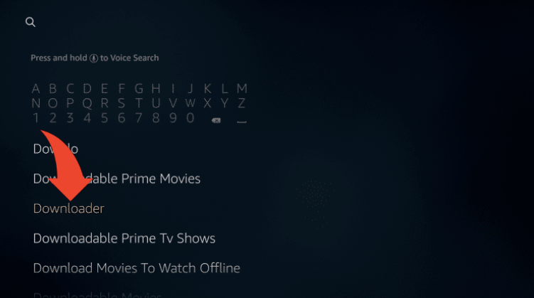 Search for Downloader on Firestick